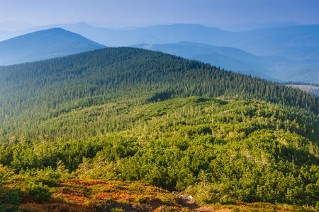 Beautiful autumn mountain landscape. View on the wooded hills and peaks in the distance.