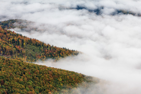coatings: Landscape in autumn mountains. View from the top of the mountain on the forest fog coatings. Carpathians. Europe.