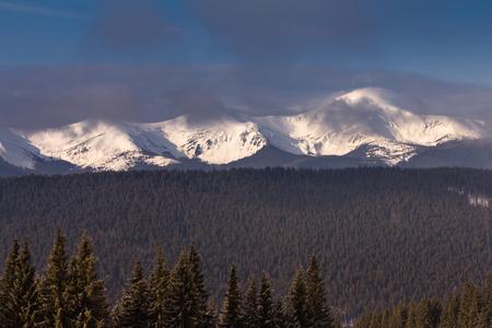 Paisaje de invierno brumoso en las montañas. Escena invernal pintoresca y hermosa. Vista de las colinas del bosque cubiertas por la nieve y la escarcha. Foto de archivo - 91594323
