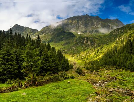 Majestic landscape of summer mountains. View of coniferous forest hills in fog and rays of sunlight. Fagaras Mountains. Transylvania. Romania. Travel background.