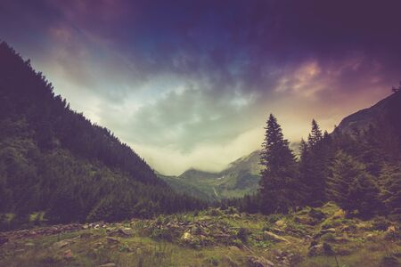 Mountain landscape and forests tops covered with mist. Dramatic overcast sky. Fagaras Mountains.Transylvania. Romania. Filtered image: cross processed vintage effect. Reklamní fotografie