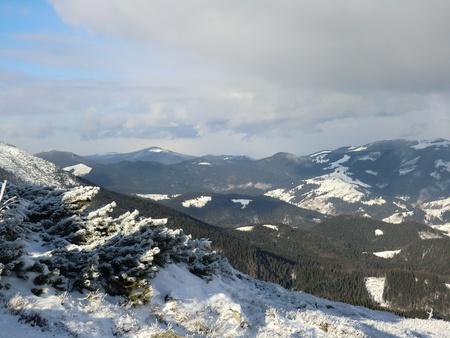 ridges: Creste di montagna in Carpazi in inverno Archivio Fotografico