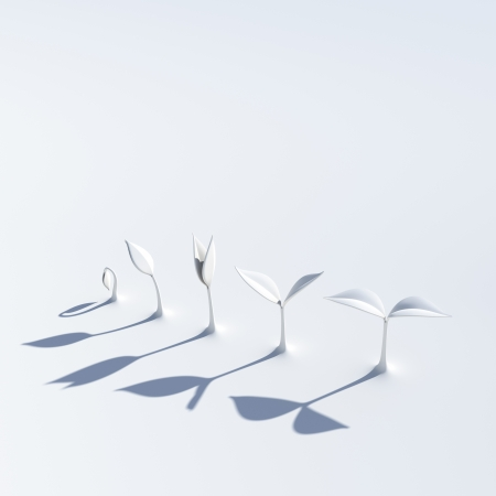 sprouting: the growing stage of sprouts rendered with white material