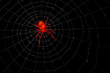 Rendering of a red transparent spider on his web waiting for game.  Play with different color by changing hue.
