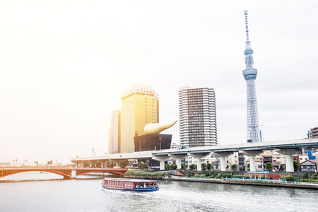Business and culture concept - panoramic modern city skyline bird eye aerial view with tokyo skytree under beautiful cloudy sky in Tokyo, Japan
