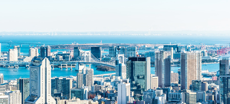 Asia Business concept for real estate and corporate construction - panoramic modern city skyline bird eye aerial view under bright sun and blue sky in Tokyo, Japan