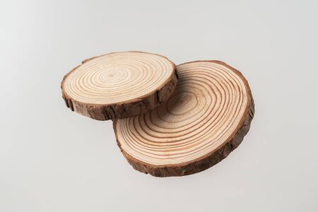 Design concept - top view of circular wood piece with annual ring isolated float in air on white background for mockup, its real photo, not 3D render