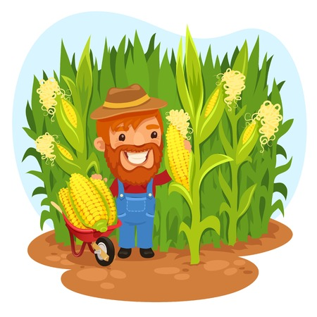 Harvesting Farmer In a Cornfield  In the EPS file, each element is grouped separately  Clipping paths included in additional jpg format  Vector