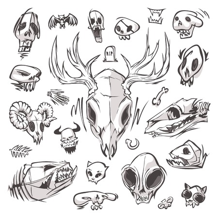 Diverse Skulls and Bones Set Vector