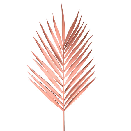 Tropical Palm leaf isolated on white background. Golden pink Palm frond Vector illustration.