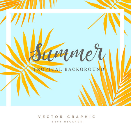 Summer vector background. Tropical palm leaves. Yellow and blue summer banner.