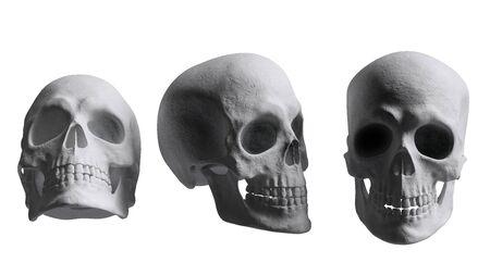 Skull set isolated on white 3d rendering Stock fotó