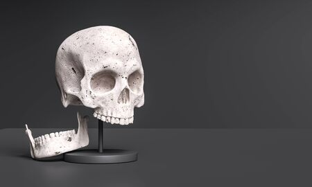 Human head Skull anatomy, history or archeology museum concept background 3d rendering