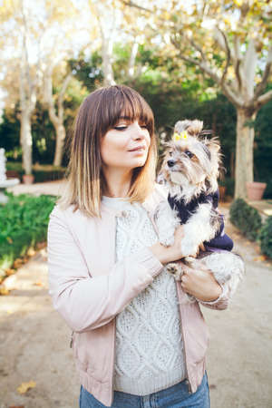 The Biewer Yorkshire terrier rare purebred dog with its owner walking in the beautiful park. Woman in casual clothes and dog has cute little yellow color bow and pretty sweater. Standard-Bild