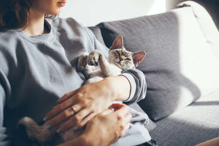 Beautiful woman is holding and hugging cute Devon Rex cat. Happy young woman with her his purring cat. Home pets, Lifestyle. Relax and joy expression Standard-Bild