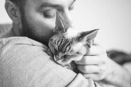 Close-up of cat and man. Portrait of a Devon Rex kitten and young beard guy. Handsome animal-lover man is hugging and cuddling his little cat. Cat enjoys human company. Standard-Bild