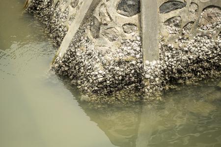 breakwater: Breakwater Foto de archivo