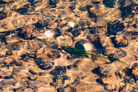 Stones in the Creek, ripples on the water