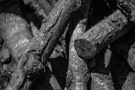 monotone: Monotone Mango wood Stock Photo