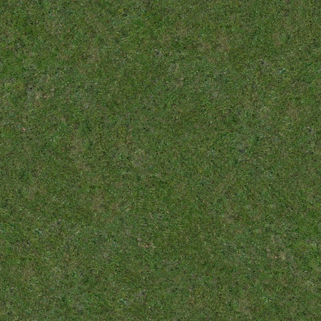 Clean seamless and tileable grass texture.