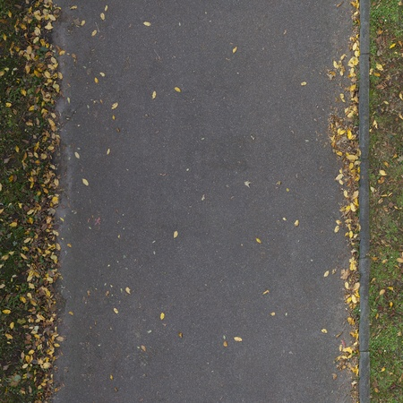 road surface: Seamless autumn grass texture with leaves Stock Photo