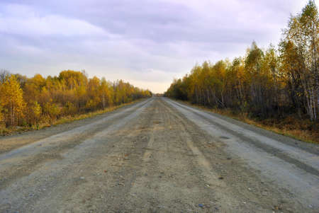 lonesome: Dirt road during an autumn season Stock Photo
