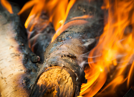 ember: Burning fire wood and ember