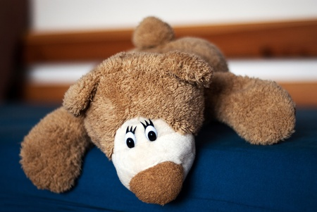 Photo of a teddy bear on the blue bed photo
