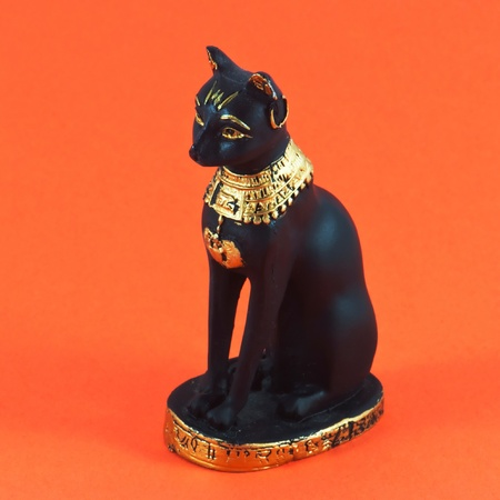Black egyptian cat on orange background photo