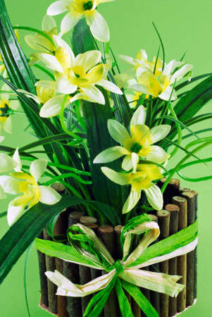 Pot of daffodils on green background Stock Photo - 12719130