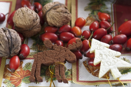 Christmas decoration with walnuts and rosehip photo