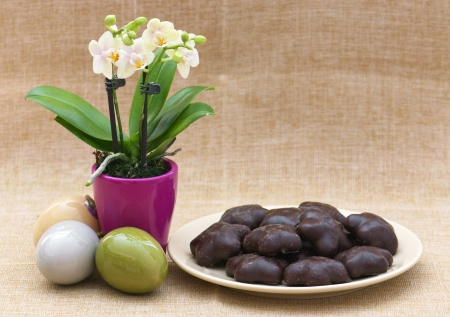 Orchid flower, easter eggs and gingerbread  Easter decoration  photo