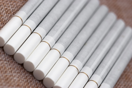 White cigarettes in a row  photo