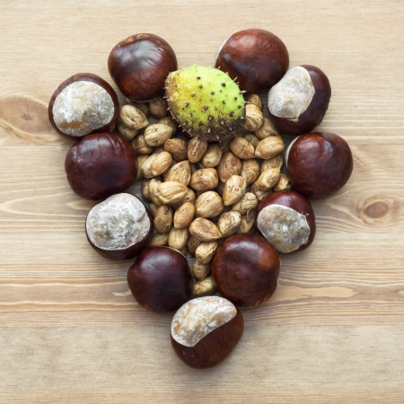 Autumn heart of horse-chestnuts and nuts on the table. photo