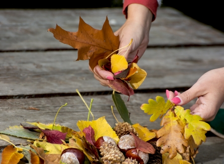 Colorful autumn leaves in female hands. Stock Photo - 22995626
