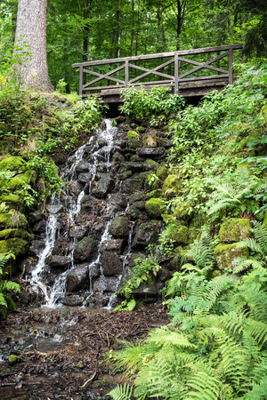Wooden bridge and waterfall with fern plants. Stock Photo