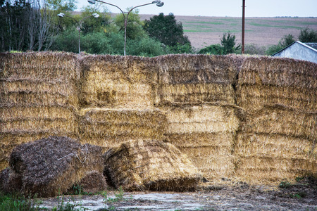 Stacks of dry hay. Farmhouse in the country. photo