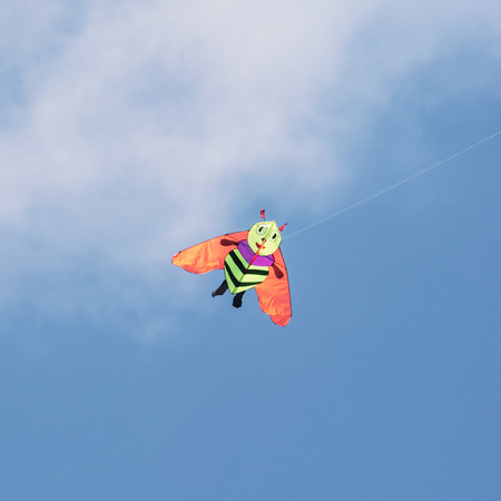 Kite flying - bee photo