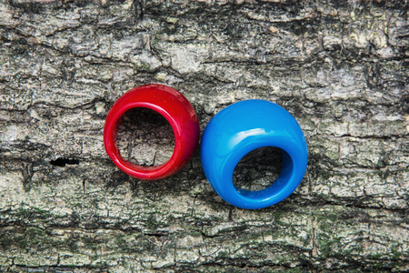 Two colored rings on the tree bark. photo
