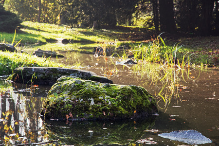 Stones overgrown with moss in a creek. Natural theme. photo