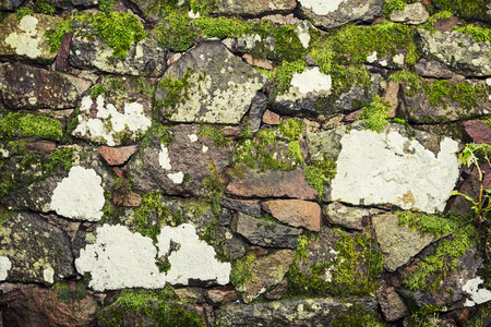 Old stone wall with green moss. Outdoor theme. photo
