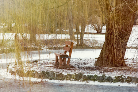 weeping willow: Weeping willow and wooden bench by the frozen lake. Natural theme. Stock Photo