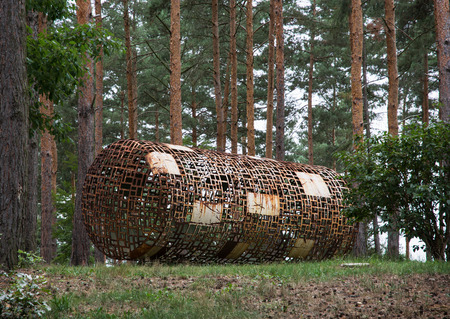 pine trees: Abstract sculpture in the roller shape and pine trees. Botanic garden in Prague, Czech republic.