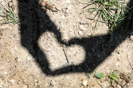 Young woman is doing heart shadow by hands. Valentine's day. Imagens - 40063350