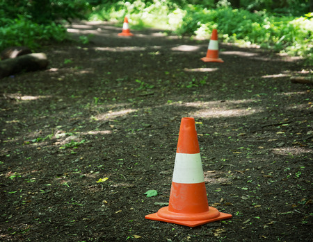traffic   cones: Traffic cones defining route to run through the wood. Leisure activity. Stock Photo