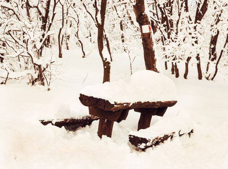 wooden trail sign: Snowy benches and red tourist sign. Winter tourism in the forest.