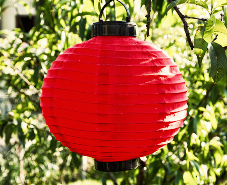 paper lantern: Red paper lantern lamp in the garden. Stock Photo