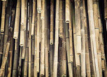 architectural lighting design: Closeup photo of hanging bamboo decoration. Architectural element.