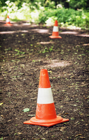 traffic   cones: Traffic cones defining route to run through the wood. Outdoor leisure activity.