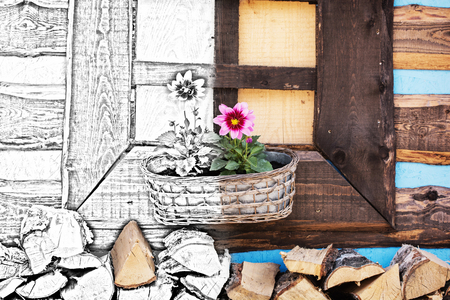 wooden window: From sketch to the wooden window with flowers and chopped wood. Rural scene. Stock Photo